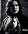 In My Heart - hermione-and-severus fan art