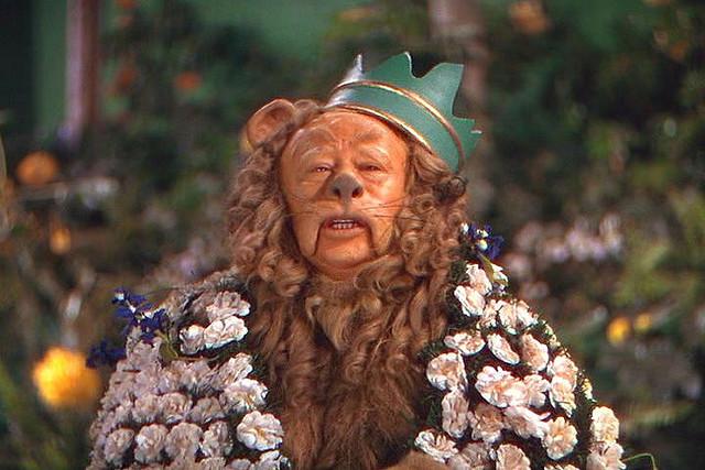 Lion-cowardly-lion-of-oz-17649417-640-42