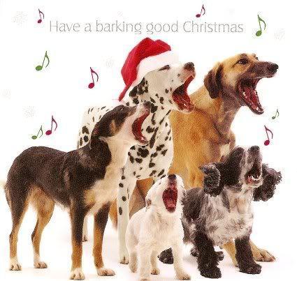Merry クリスマス dear Frances :*