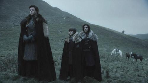 Robb, Bran Stark & Jon Snow