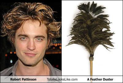 Robert Pattison is a Feather Duster