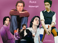 Rufus wallpaper - rufus-wainwright wallpaper