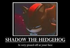 SHADOW HATE U FACE!!!!!!!!!