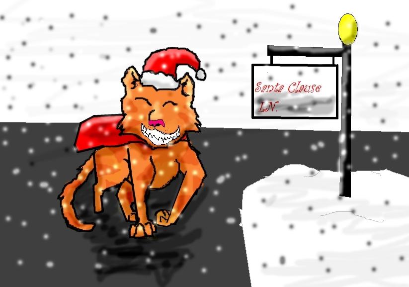 Santa claus LN