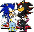 Sonic and Shadow Chao - sonic-forever photo