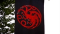 Targaryen banner - game-of-thrones photo