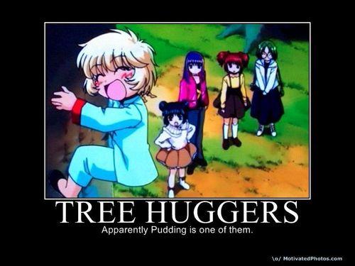 cây hugging
