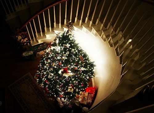 Photography Fan wallpaper probably with a stairwell entitled christmas