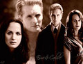 Carlisle and Esme - esme-cullen photo