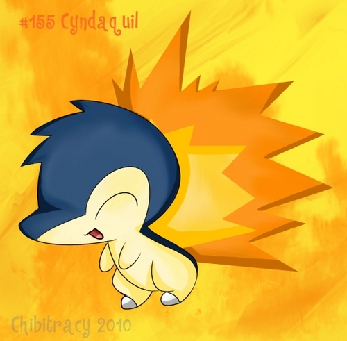 Cyndaquil - pokemon Photo