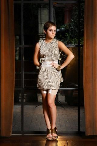 Emma Watson - Photoshoot #071: Robert Mitra (2010) - anichu90 photo