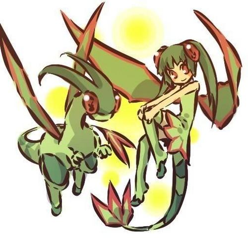 Flygon and Trainer.
