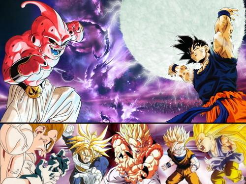 Goku and Buu