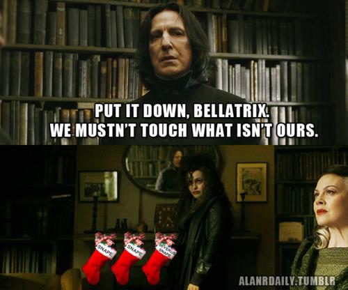 HP Christmas!