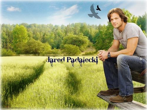 Jared Padalecki :)