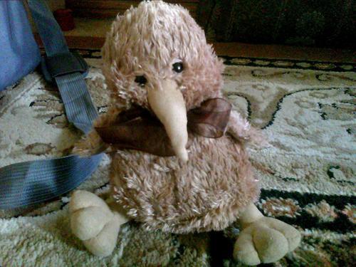 Kiwi My sweet stuffed Kiwi bird