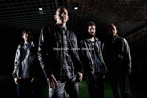 LP 2010