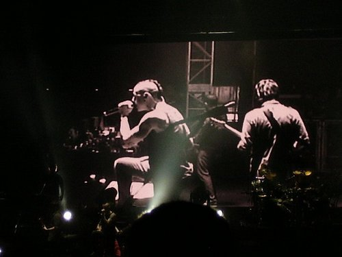 Linkin Park fond d'écran containing a concert called LP <3