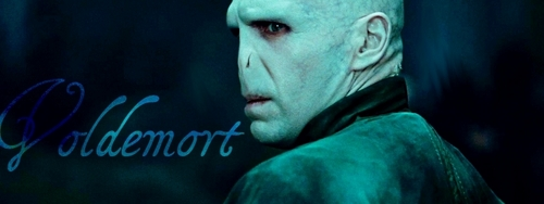 Lord Voldemort - Banner