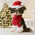 Merry Christmas - all-small-dogs photo
