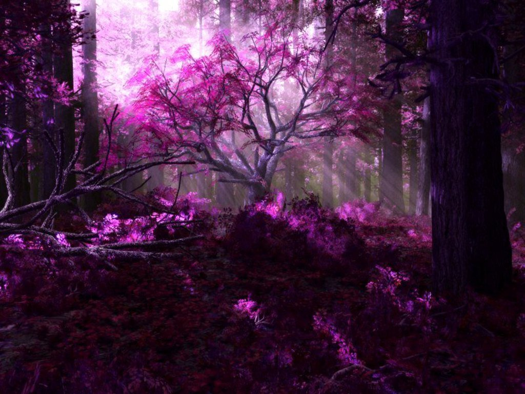 Daydreaming purple forest