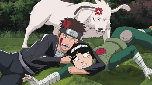 Rock and Kiba