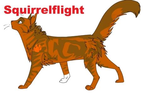 Squirrleflight