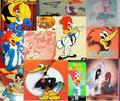 Woody Woodpecker VHS Collab - woody-woodpecker photo