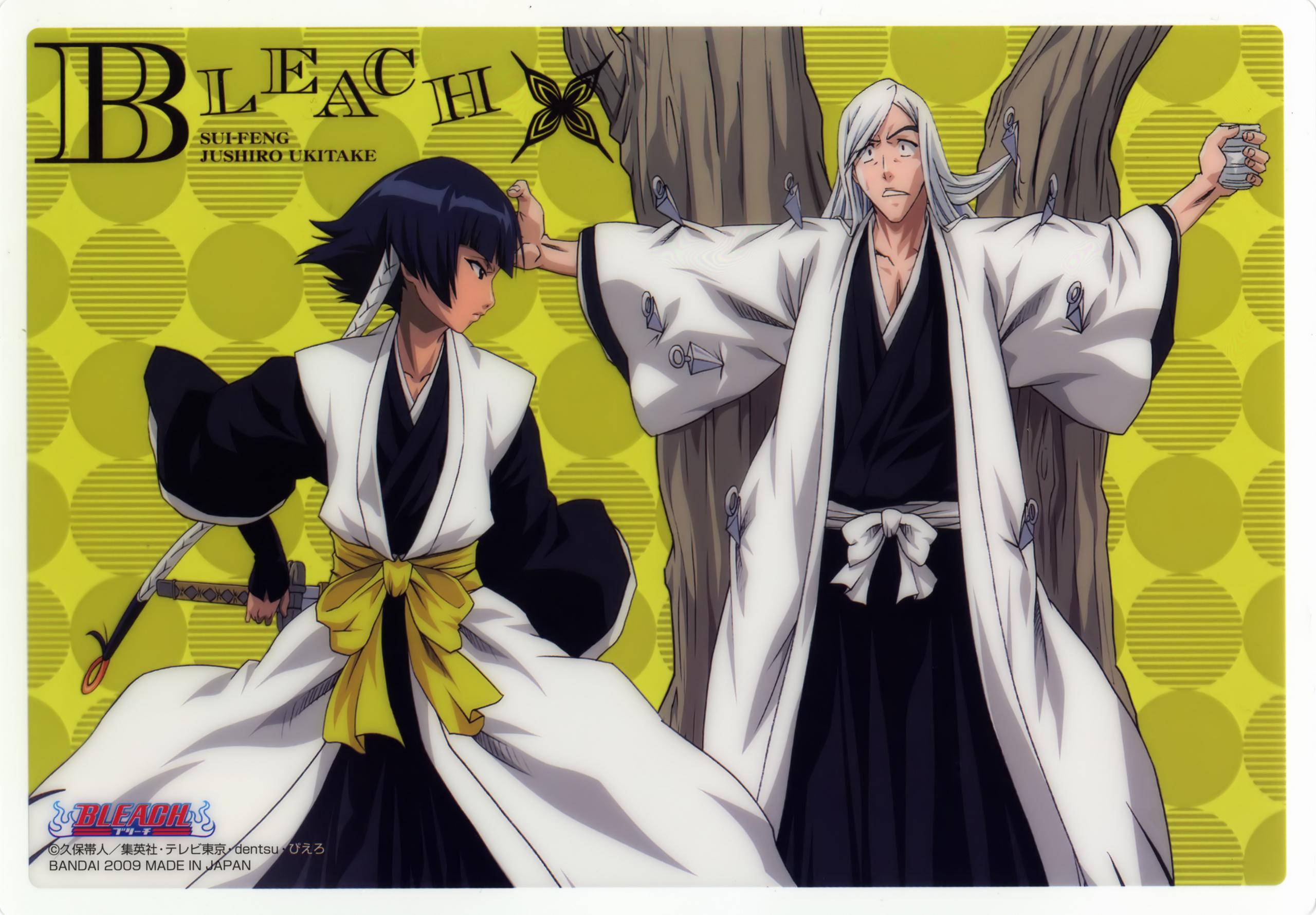 download its about Soifon Yoruichi Ichigo Toshirou Bleach Anime pic