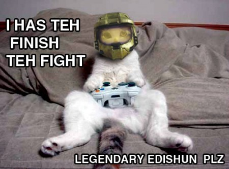 halo: so good even cats play it