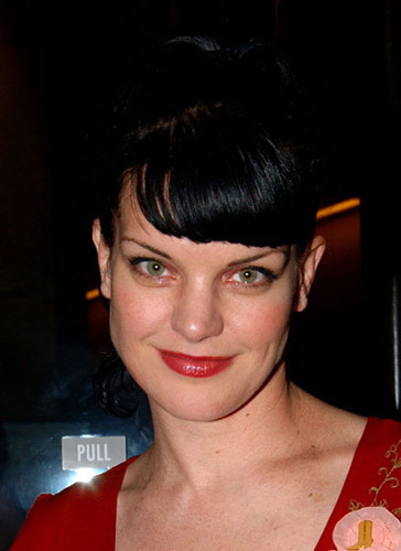 NCIS wallpaper titled pauley perrette