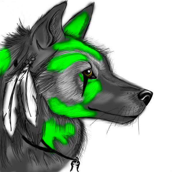 Круты фото волка на аву