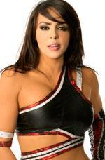 WWE 레일라 바탕화면 probably containing attractiveness and a portrait entitled wwe-diva-layla