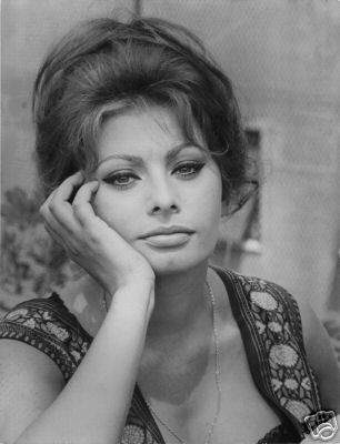 Sophia Loren Images Close Up Wallpaper And Background