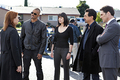 Criminal Minds - Episode 6.13 - The Thirteenth Step - Promotional 照片