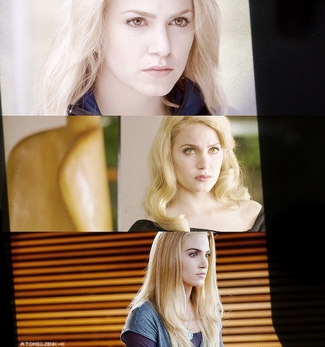 The Cullens wallpaper containing a portrait called Fan Arts