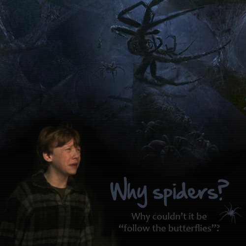 Ron and his fear of spiders :))