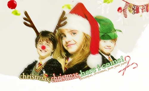 Have Yourself a Merry Potter Christmas