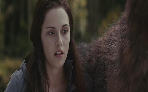 Jacob and Bella Eclipse - jacob-and-bella Screencap