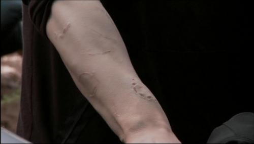 Jasper 'scars'