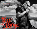 Juice Ortiz - sons-of-anarchy wallpaper