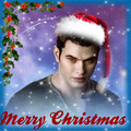 Merry Christmas - emmett-cullen fan art