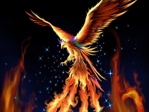 Fantasy wallpaper entitled Phoenix