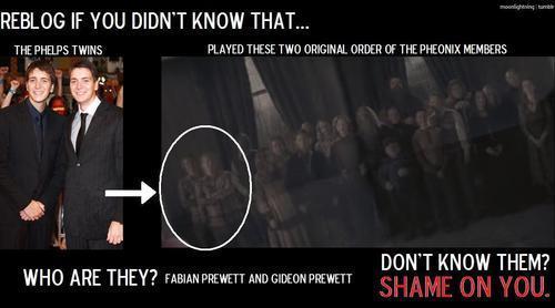 Shame on bạn