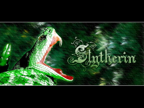 Slytherin FTW forever
