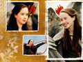 Susan(Anna) - the-chronicles-of-narnia wallpaper