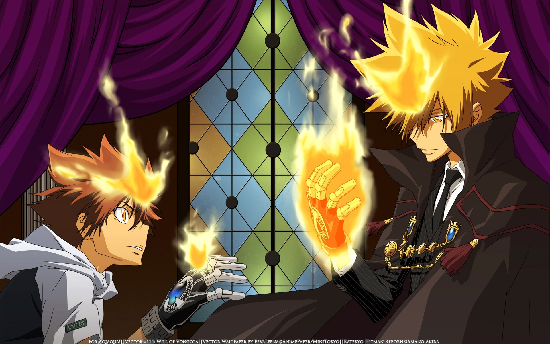 tsuna giotto katekyo hitman reborn wallpaper