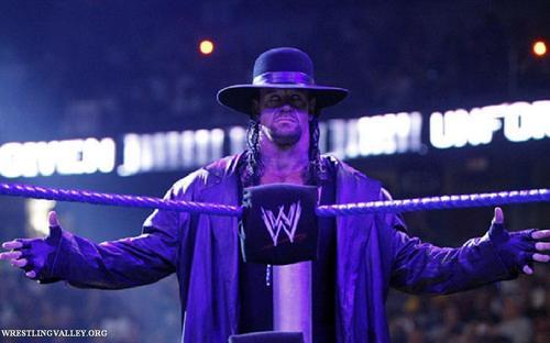 Undertaker images undertaker hd wallpaper and background photos undertaker wallpaper titled undertaker voltagebd Images
