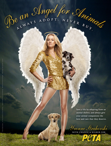 Yvonne Strahovski پیپر وال entitled Yvonne Strahovski's 'Angel For Animals' PETA Poster