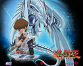blue eyes shining dragon kaiba - yu-gi-oh wallpaper